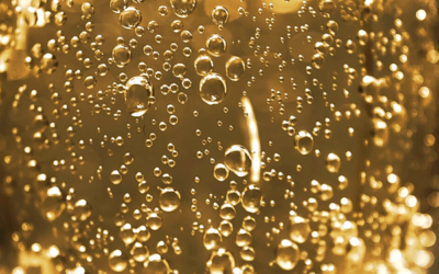 Bubbling over in Southern Champagne